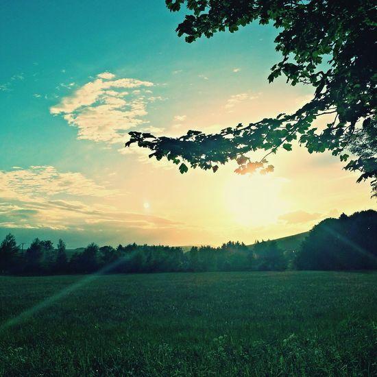 Vintage Sunrise