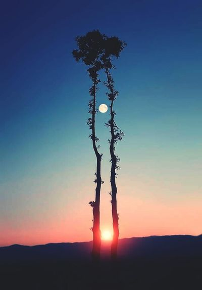 Sunset Silhouette Nature No People Beauty In Nature Sky Outdoors Moon And Sunset Moon And Sun Moon Capture Moody Sky Beauty In Nature Nature EyeEmNewHere