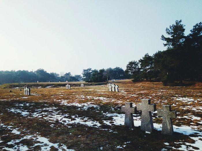 No People Landscape Cemeteryscape Germancemetery Crosses & Headstones Tree Sky Outdoors Day