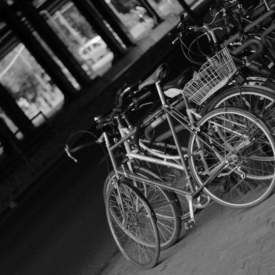 Drahtesel ,Fahrräder ,Fahrrad ,Berlin ,grau, schwarz,weiß,black,white,bike