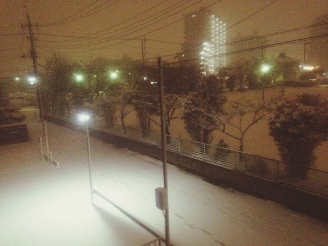 Snowy night❄️