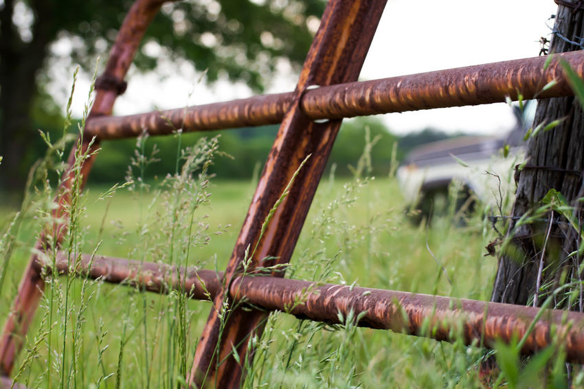 Fence Rust Field Taking Photos Outdoors My Country In A Photo The Great Outdoors - 2015 EyeEm Awards