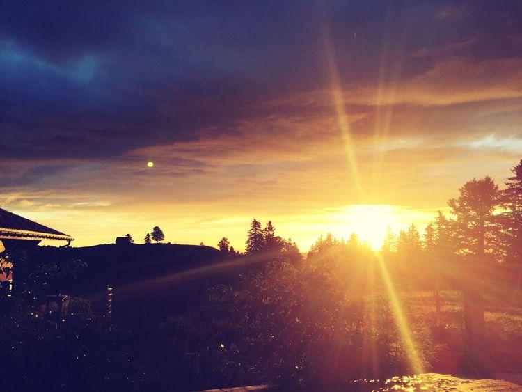 Sunset Sunlight Tranquil Scene Beauty In Nature Outdoors Nature No People Beauty In Nature Tranquility Cloud - Sky