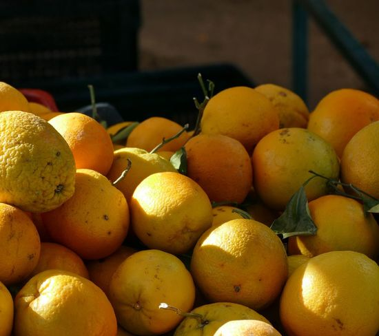 Paint The Town Yellow Fruit Citrus Fruit Healthy Eating Freshness Lemon Food And Drink Orange - Fruit Food No People Organic Yellow Vitamin C Ripe Healthy Lifestyle Abundance Market Grapefruit Large Group Of Objects Day Outdoors