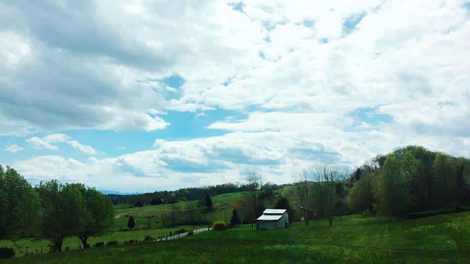 Farm Love. Barn Cloud - Sky Sky Plant Tree Beauty In Nature Scenics - Nature Land Environment Field Tranquil Scene Day Tranquility Landscape Nature Green Color No People Grass Growth Non-urban Scene Idyllic