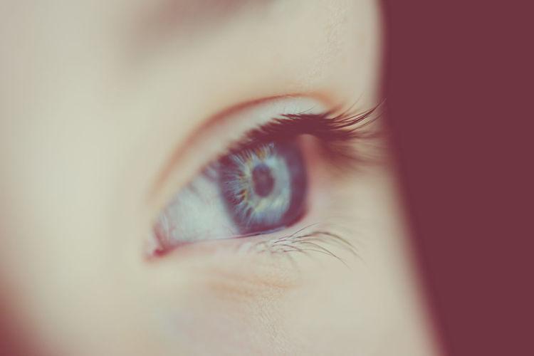 Close-up of boy eye