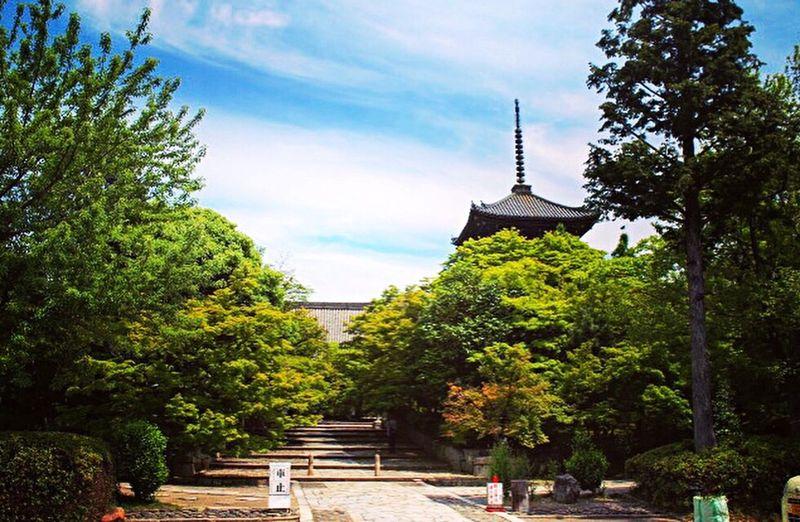 真正極楽寺 真如堂 京都 Kyoto Kyotojapan 2015  Relaxing