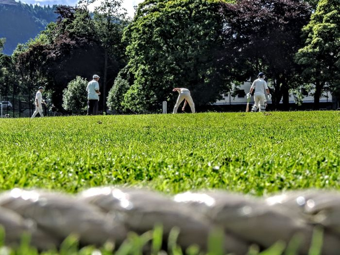 Plant Grass Tree Green Color Nature Growth Men Land Day Field Focus On Background Selective Focus Adult Landscape Group Of People Outdoors People Leisure Activity Sport Lifestyles Surface Level Farmer Cricket Field Cricket Match