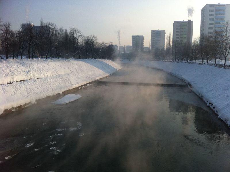 winter in Sarajevo at aleja lipa Winter In Sarajevo