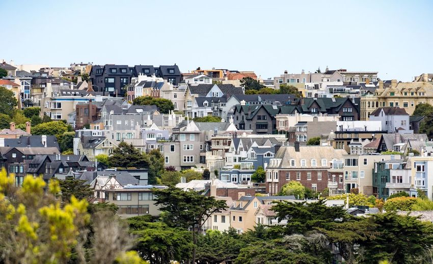 San Francisco Slope Neighbourhood City Tree Outdoors Day No People House Residential Building Cityscape Architecture Clear Sky Building Exterior