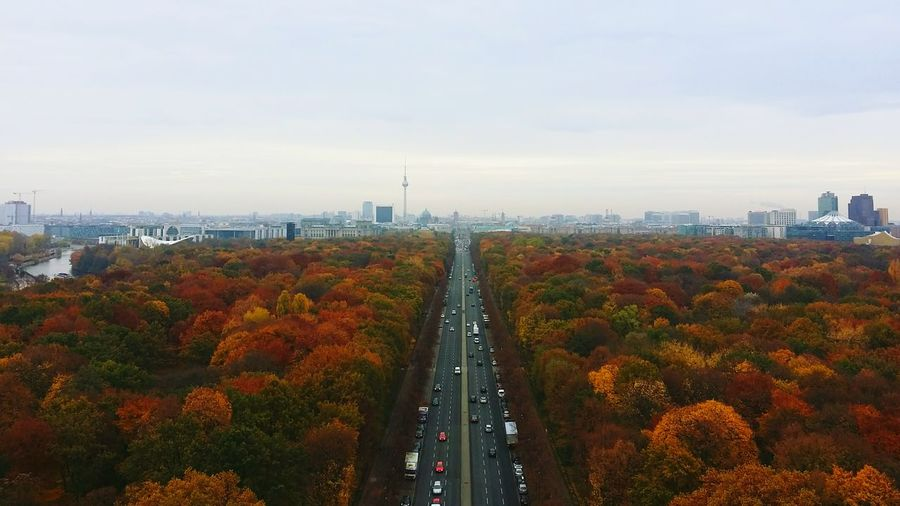 High Angle View Of Highway By Autumn Trees