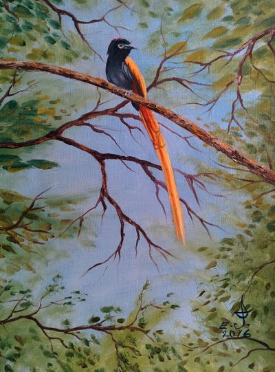 Aljosha this is for you my friend with this I would like to say to you that I really appreciate your friendship ,thanks for your support and thanks for being there for me from day one to this day,i hope you like this. Bird Animals In The Wild Wildlife Tree Nature Beauty In Nature Branch Living Treasures Oil Painting Drawing Fine Art Freedom Art, Drawing, Creativity Friendship. ♡   Love ♥ Koi.I'm dedicating this to my very special friend Aljosha.