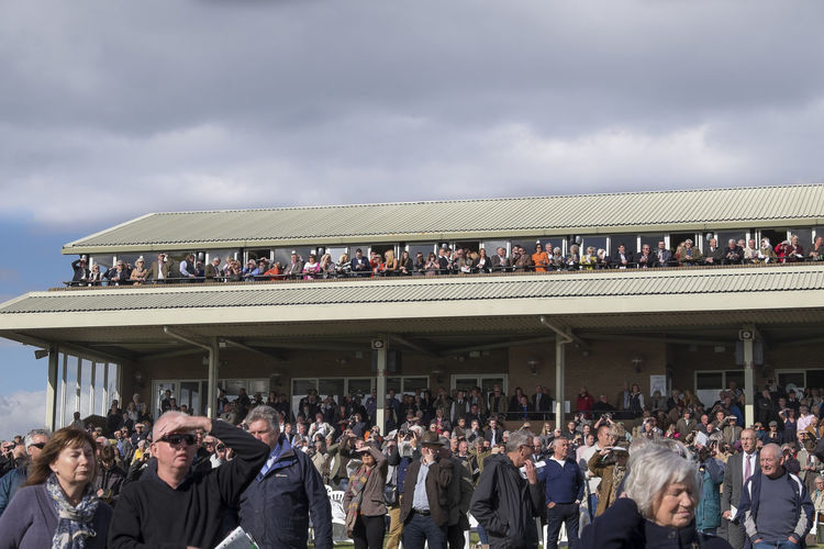 Racing boxes and stands Boxes Horse Race Horse Racecourse Horse Races Horse Racing Large Group Of People Spectator Spectators Stadium Box