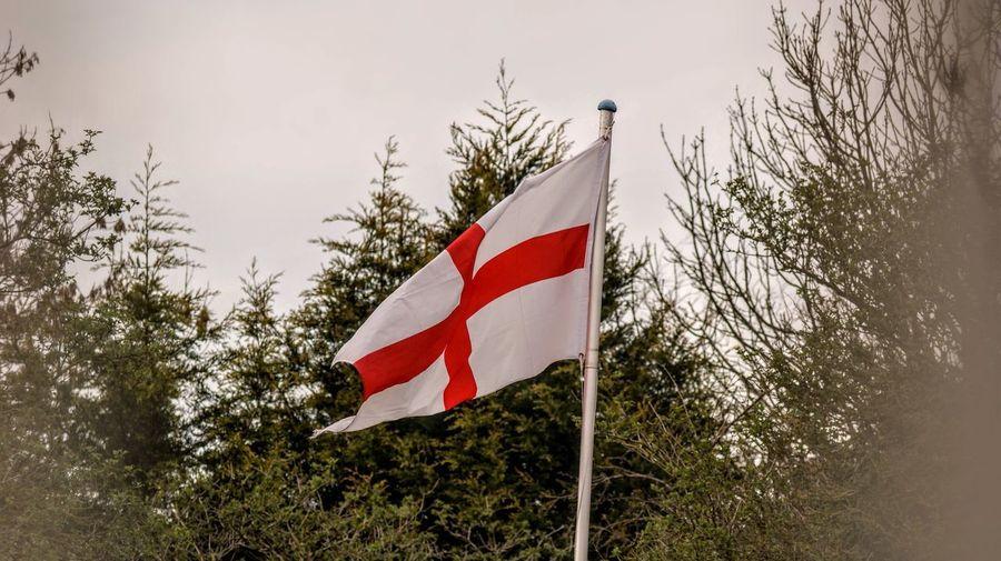 Flag Patriotism