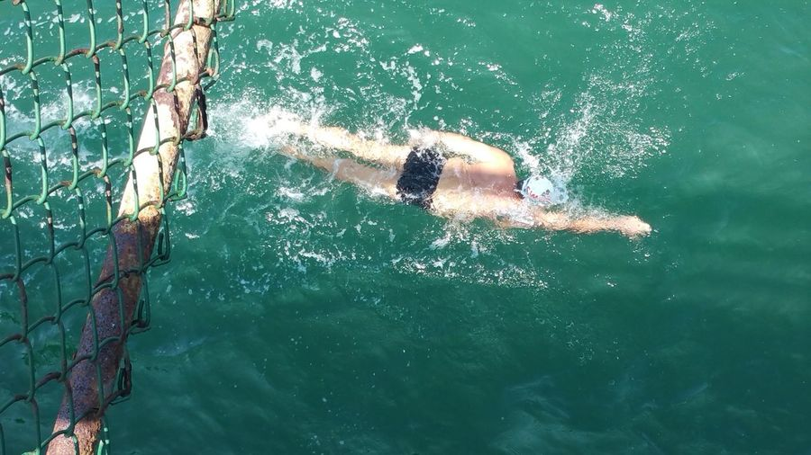 High angle view of swimmer swimming in pool below fence