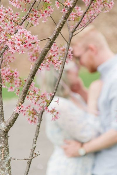 Romantic spring love EyeEm Selects Flower Flowering Plant Plant Two People Adult Love Couple - Relationship Togetherness Heterosexual Couple Focus On Foreground Bonding Positive Emotion Beauty In Nature Nature Tree Day Women Men People Freshness