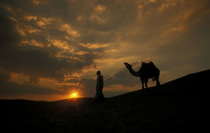 Silhouette Man With Camel Walking In Desert Against Cloudy Sky During Sunset