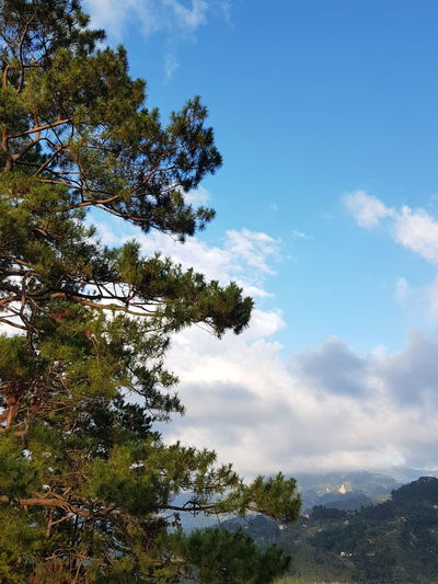 Scenic View in