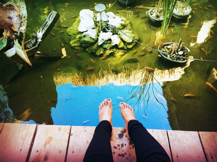 Low Section Water Men Standing Human Leg barefoot High Angle View Personal Perspective Human Foot Leg