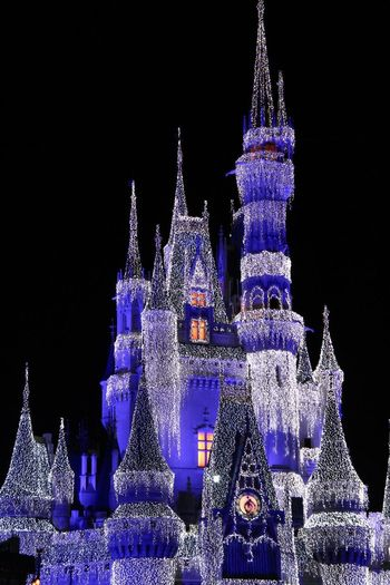 Magic DisneyWorld Disney Castle Night Illuminated Celebration Christmas Christmas Decoration Architecture Christmas Tree Christmas Lights No People Building Exterior Outdoors Sky Tree Topper Winter Clear Sky Holiday - Event Low Angle View Black Background Snow EyeEmNewHere