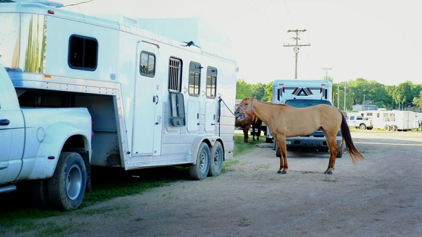 I found some photographs of the Washington County Kansas Rodeo online: http://www.dispatchesfromkansas.com Rodeo Horses Rural America Cowboys Kansas A Day In The Life MidWest
