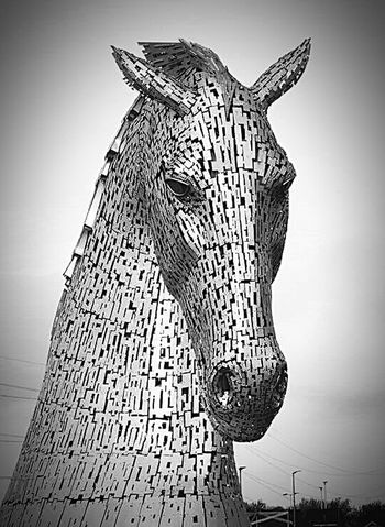 The Kelpies Black & White Horse Water Horse Statue