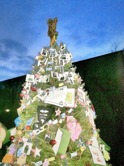 Camera 360 App Washington, D. C. Washington DC WashingtonDC Vietnam War Era Vietnam War Vietnam War Memorial Christmas Tree Christmas Tree ~ Christmas Tree Decorating