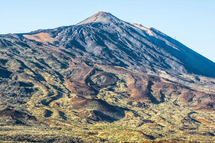 Tajinaste Tajinaste Rojo Teide Teide National Park Teide Volcano Teidenationalpark Tenerife