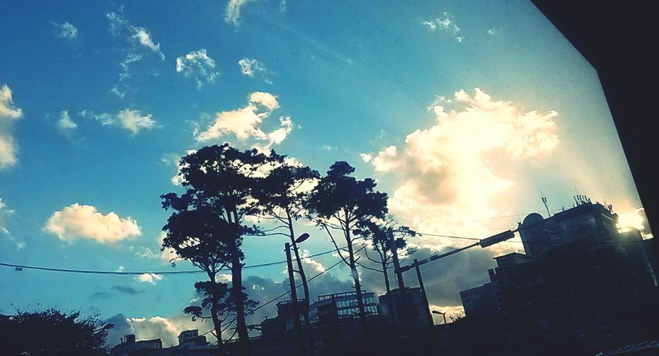 비온뒤맑음이라는말을실감한날^^날씨가정말좋아보인다.이로써여름겨울하늘사진모두간직♡ 2013.11.17.일. 계원예대면접. D-10