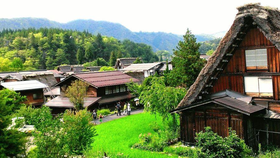 岐阜県、白川郷。 Taking Photos Hello World Hi! Enjoying Life Nature Japan Gifu Sirakawagou Naturelovers Country Green