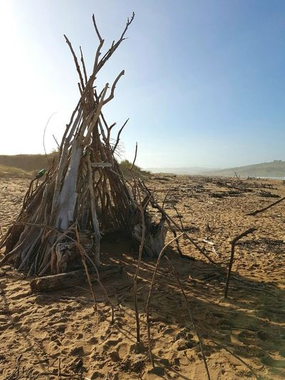 Sand Tree Tipi Tent Indian No People Nature Day Tranquil Scene Dramatic Sky Beauty In Nature Fallen Tree Tronco Scenics Deserts Around The World Dry Land Arid Climate Landscape Dunas
