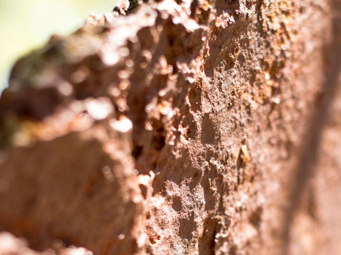 Anchor Crimea Historical Boulvard Old Old Anchor Rust Sevastopol