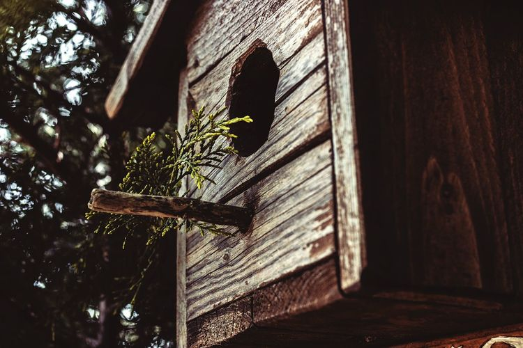 Low angle view of wooden birdhouse