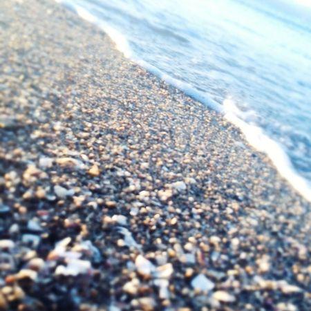 Sea Umi Beach Love ♡