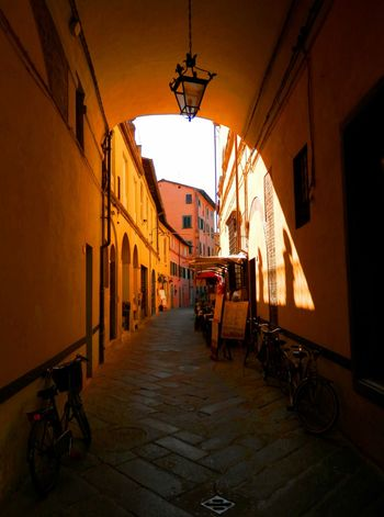 City Colors Exploring Holiday Lucca Vacations Alley Alleyway Architecture Building Building Exterior Built Structure Bycicle Day Europe House Italy Old Buildings One Point Perspective Shadow Street Streetphotography Summer Travel Destinations Urban