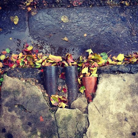 Streetphotography Autumn Colors Rosario Argentina Battle Of The Cities Arquitecture Plumbing The Architect - 2018 EyeEm Awards