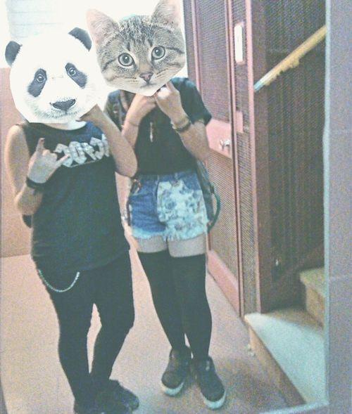 Bff Animal PANDA ♡♡ Cat♡ BFF ♥