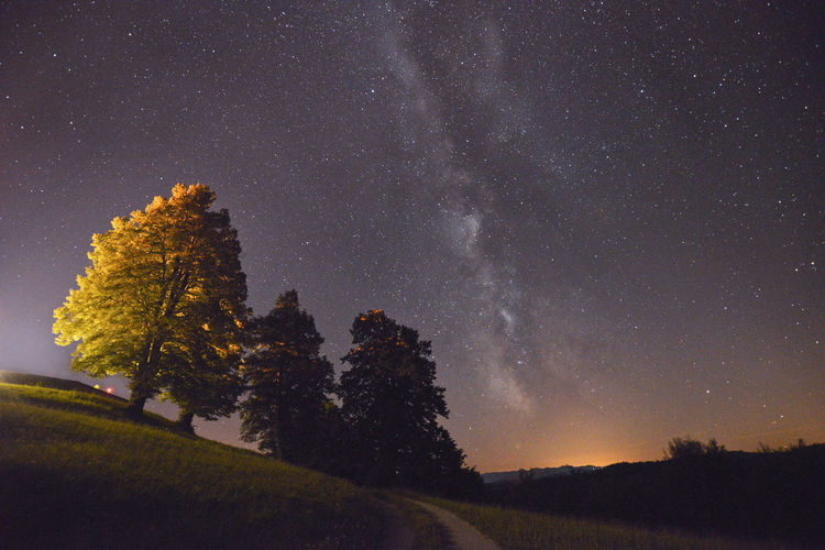 Tilt image of trees on field against star field in sky at night