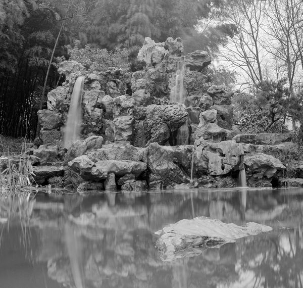 Film Nanjing Beauty In Nature Blackandwhite China Day Hasselblad Imax Kodakvision3 Lake Medium Format Nature No People Outdoors Reflection Standing Water Tree Water Waterfront