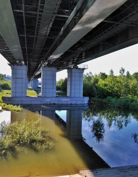 Drowned lands Summer Bridge Drowned EyeEmRussianTeam Streamzoofamily