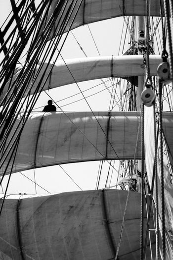 A trip on the 3 Mats Barque Belem back in June 2014. We sailed between Marseilles and Nice. Blackandwhite Bnw Bnw_friday_eyeemchallenge Bnw_society Day Destination France Lifeatsea Low Angle View Mast Mediterranean  Mediterranean Sea Nautical Vessel Outdoors Sail Sailing Sailing Ship Sailor Sea Ship Summer Tallship The Belem Transportation Travel