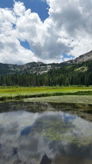 Silver Lake Clouds Clouds And Sky Lake Water Sunshine Summer Trees Water Reflections Reflection