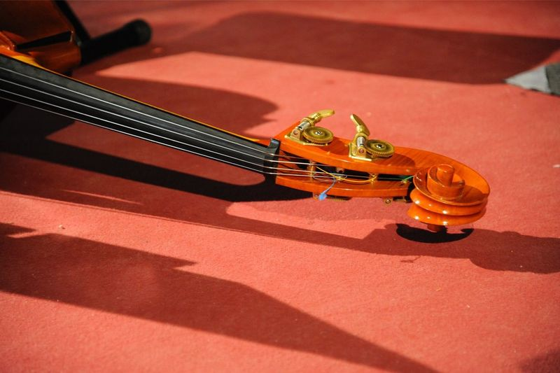 Music Musical Instrument Music String Instrument Shadow Musical Equipment Arts Culture And Entertainment Sunlight Guitar Musical Instrument String Day No People High Angle View Sunny String Nature Still Life Indoors  Orange Color Violin
