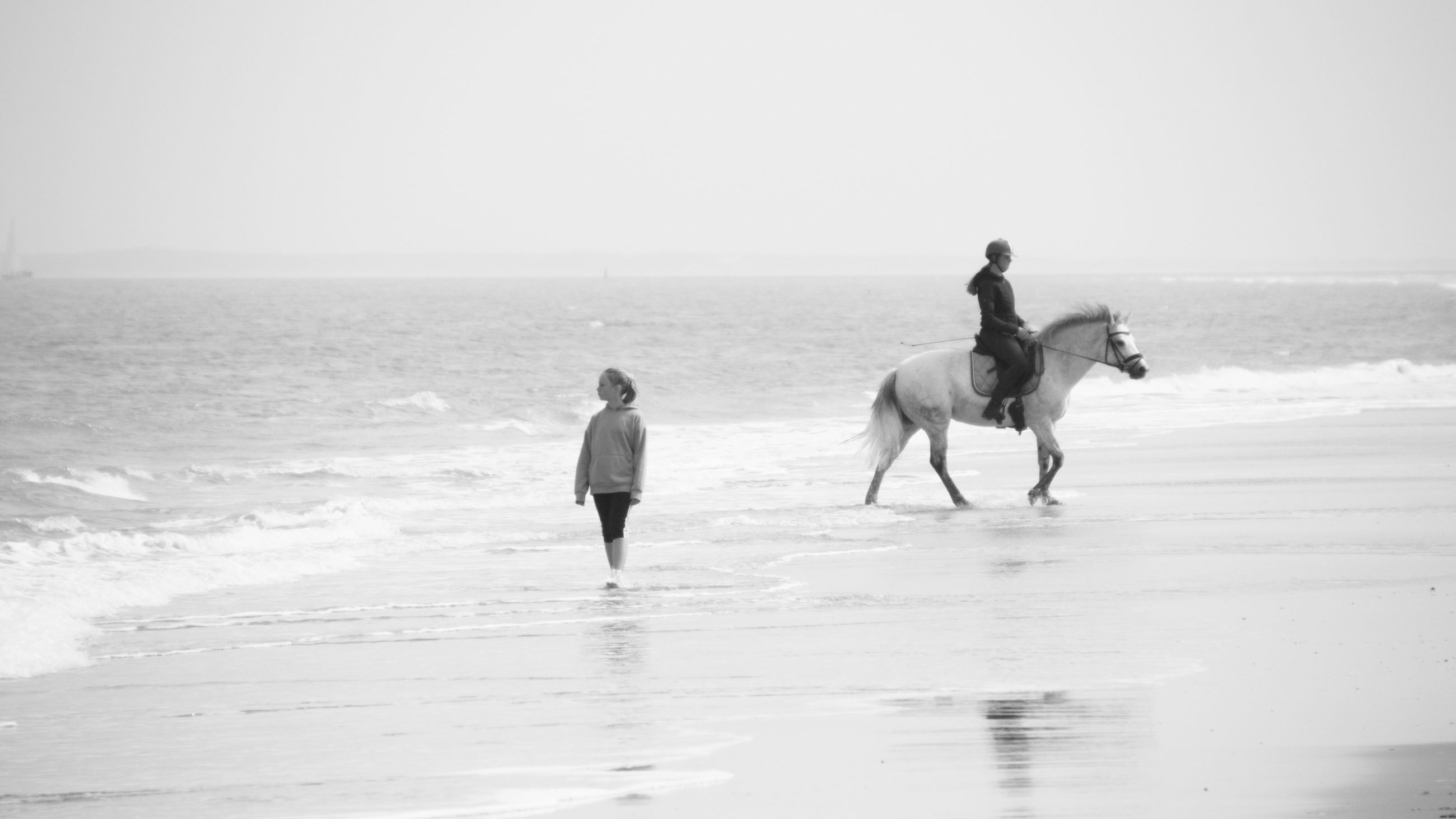 horse, water, sea, land, beach, mammal, animal, domestic animals, sky, animal themes, pet, nature, black and white, horizon, horizon over water, motion, animal wildlife, two people, men, full length, adult, sand, horseback riding, beauty in nature, white, activity, day, riding, leisure activity, holiday, vacation, trip, monochrome, monochrome photography, scenics - nature, togetherness, livestock, lifestyles, sports, person, wave, copy space, child, outdoors, ocean, women, clear sky, travel, walking, sunny, childhood, rear view, tranquility
