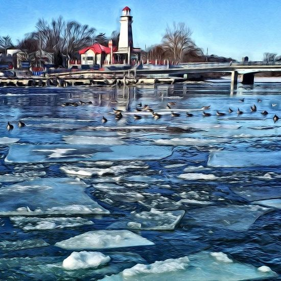 Port Credit Lighthouse Birds On The Ice Ice Flow Docks Bridge Water And Ice Geese Ducks Abridged Bridge Over Water bridges Bridge Over Icy Waters