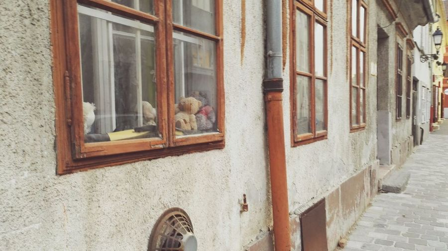 Window View Window Cityscape Street Teddy Bear Toys Window Box Residential Structure Exterior Building Human Settlement Historic Residential Building