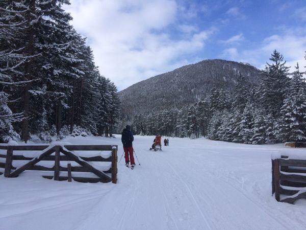 Hoiday Powder PowderDay Powderdays Snow Tirol  Winter Winterwonderland