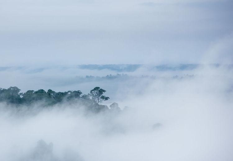 Mist and sky Misty Mist Landscape View KhaoKho,Thailand