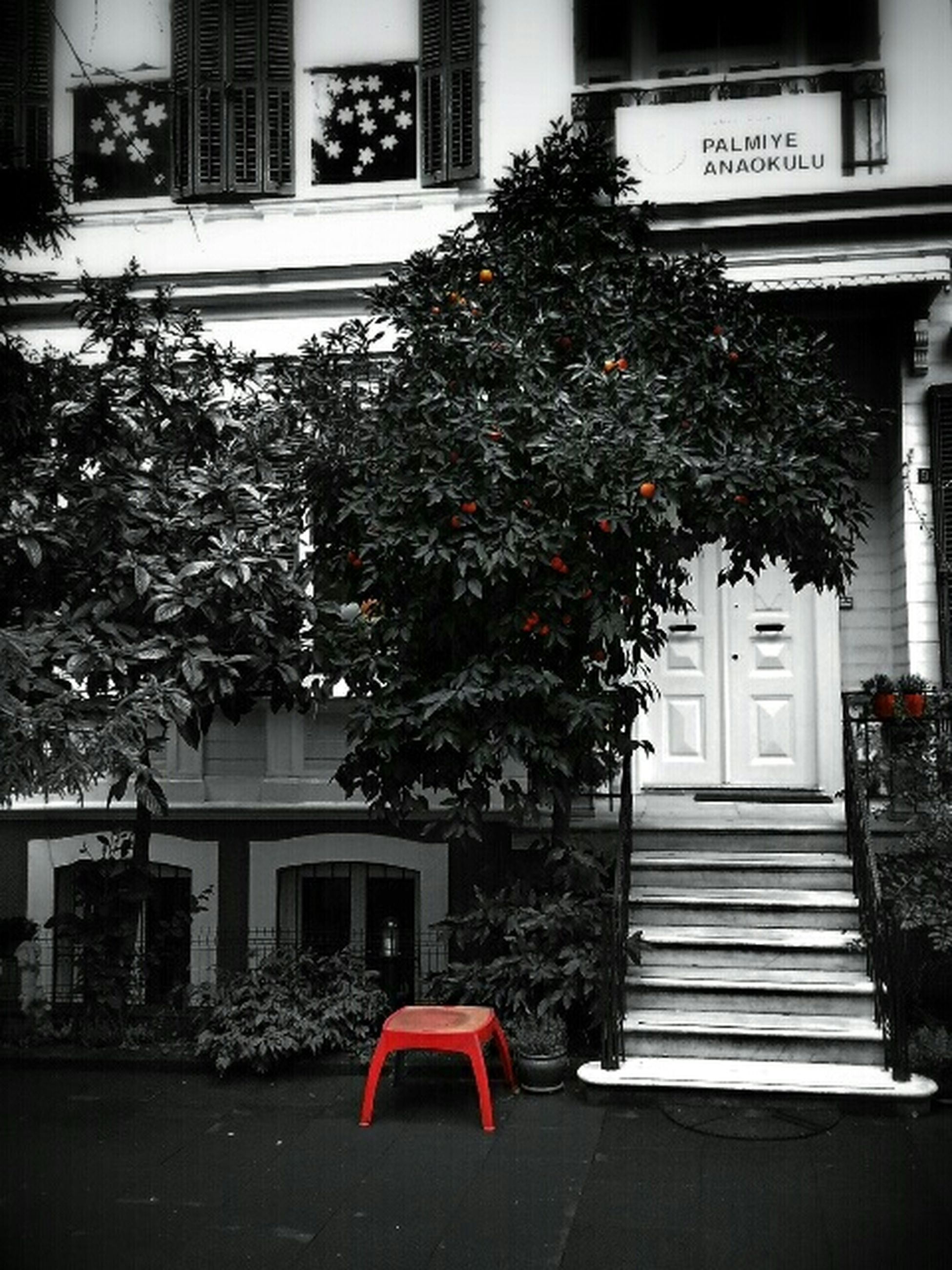 building exterior, architecture, built structure, tree, city, potted plant, house, window, growth, plant, residential structure, residential building, day, street, red, outdoors, flower, bench, sidewalk, no people