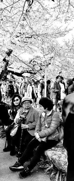 Tokyo, Japan Spring 2015 Spring Springtime Japan Sakura Taking A Break Travel Photography